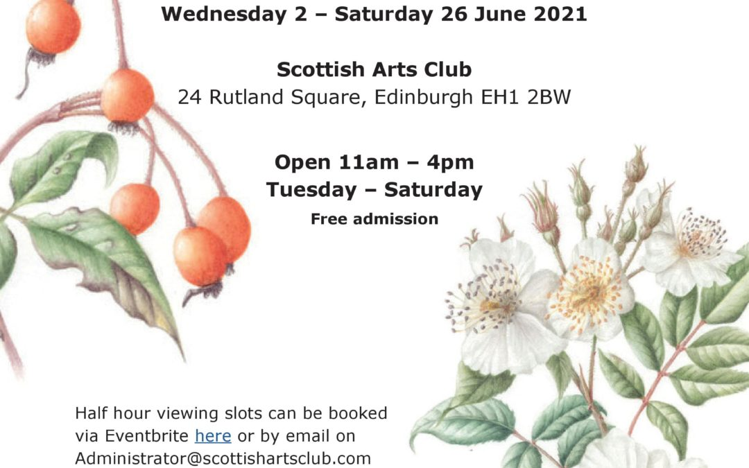 Scottish Society of Botanical Artists – 6th Annual Exhibition